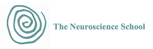 The Neuroscience School